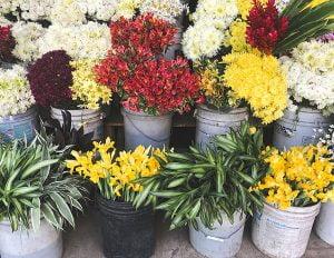 flower crown workshop Birmingham